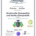 dyplom terapii manualnej według Ackermanna, fizjoterapeuta Klaudia Hołdaś, RehaFit Wrocław