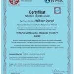 dyplom terapia manualna Wiktor Deroń 6
