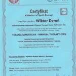 dyplom terapia manualna Wiktor Deroń 3